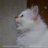 Latisha-2.5-months-3